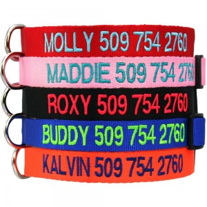 Safety Snap Dog Collars