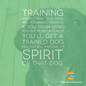 You will maintain the spirit of that dog