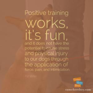 Positive training works