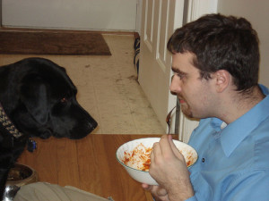 Keep that dog out of your food