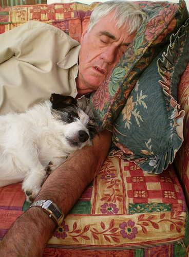 Lazy man busy not training a dog